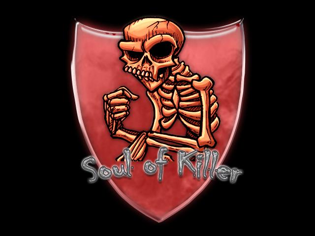 Team Soul Of Killer  Index du Forum